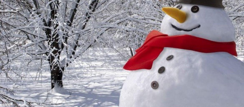 Habillez le bonhomme de neige en famille et aidez G4 Foundation